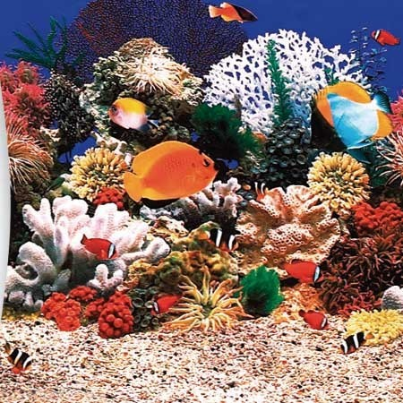 Ersatzinnenhülle Kinderbadebecken Child in Aquariumoptik