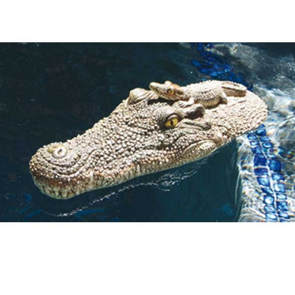 Deko krokodilskopf wasserspa schwimmbad pool for Schwimmbad deko