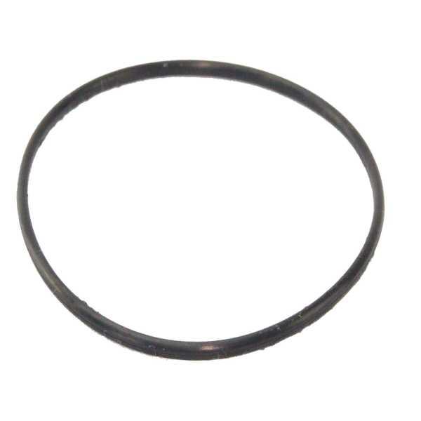 O Ring 145 x 8 mm für Sandfilterkessel